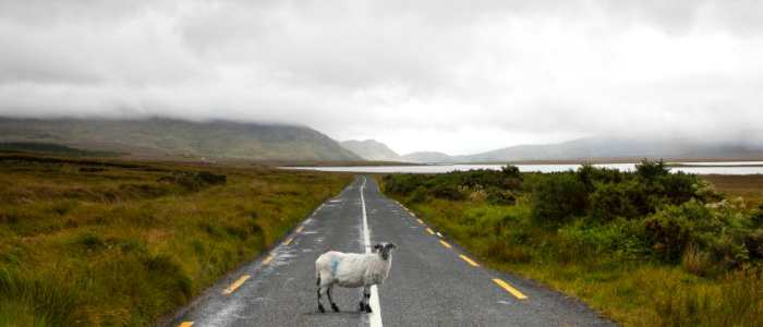 Planning the perfect Ireland Roadtrip